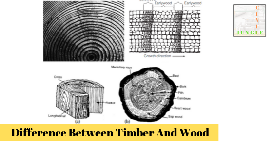 Difference Between Timber And Wood