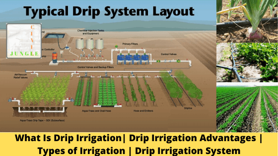What Is Drip Irrigation Advantages Types Of