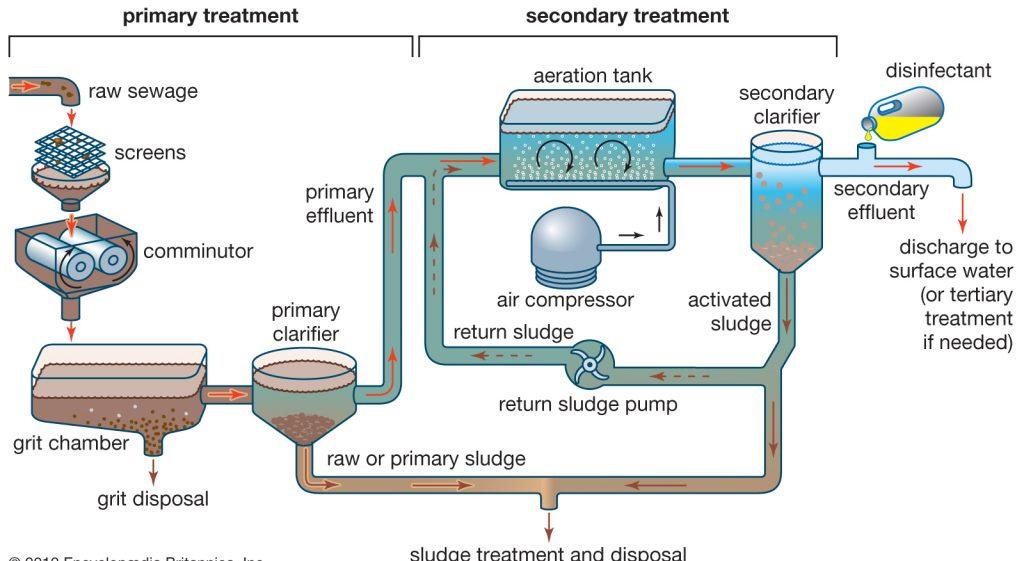 treatment-sewage-sludge-process